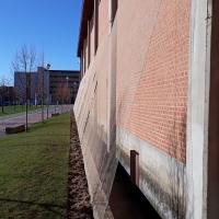 Red para enredadera para la Universidad de Salamanca.