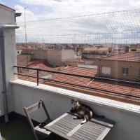 Red para gatos en terraza