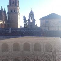 Red protección palomas Universidad de Salamanca